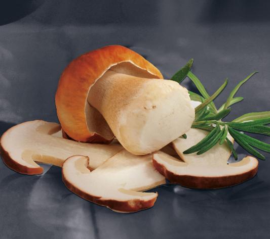 saucisson aux cepes_saucisson artisanal_pontic